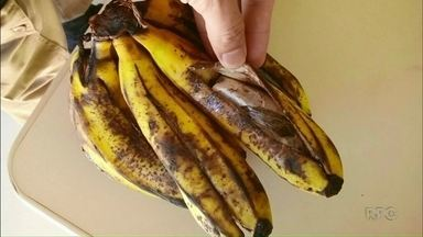 PM apreende maconha escondida em bananas entregues na cadeia de Umuarama - A droga estava no meio das frutas e foi descoberta graças à desconfiança da mulher que foi convencida a entregar as bananas.