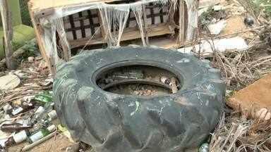 Lixo em terreno baldio causa transtornos aos moradores da Serraria - Comunidade local se queixam do problema.