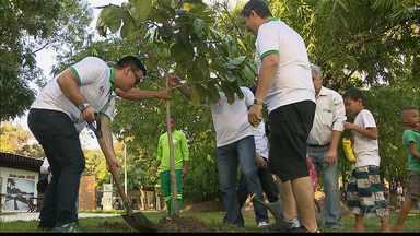 'João Pessoa Carbono Zero' distribuiu mudas de árvores no domingo - Distribuição aconteceu durante lançamento de selo de qualidade neste domingo, no Parque da Lagoa.
