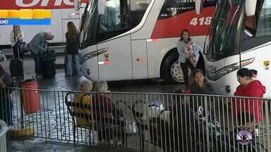 Rodoviária de Porto Alegre tem passagens disponíveis para todas as localidades - São esperadas 50 mil pessoas.