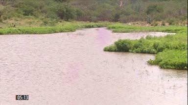 Chuva enche açudes e devolve o pasto ao sertão de PE - O volume de chuva foi o maior dos últimos 6 anos na cidade de Salgueiro.