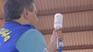 Campanha de vacinação contra febre aftosa começa em MS - Após vacinar o gado, o produtor também necessita fazer o registro da vacinação na Agência Estadual de Defesa Sanitária Animal e Vegetal (Iagro). Para as regiões de fronteira e planalto, o prazo do registro vai até o dia 19 de junho. Já o prazo para os produtores do Pantanal é até o dia 30 de junho.