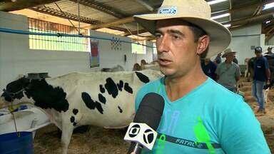 Barbacena recebe 50ª edição de exposição agropecuária - Além dos shows, Expo Barbacena conta com a participação de criadores de diversas raças de gado e equinos, para os tradicionais torneios, exposições, leilões e venda de animais.