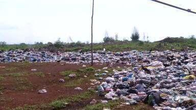 Condições inadequadas em lixão de Porto Nacional preocupam moradores - Condições inadequadas em lixão de Porto Nacional preocupam moradores
