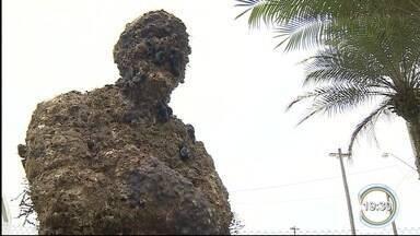 Estátua de Jacques Cousteau foi retirada do mar em Ubatuba - Ela estava perto da Ilha Anchieta.