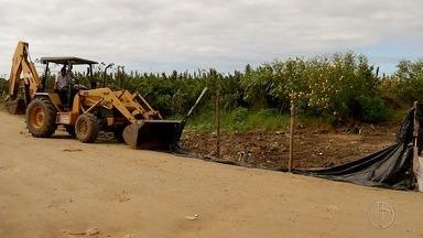 Funcionários da Prefeitura de Cabo Frio, RJ, realizam operação em Tamoios - Objetivo foi identificar e demolir construções ilegais.