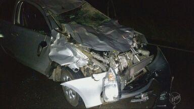 Motorista fica ferida após bater carro em vaca em Poços de Caldas (MG) - Motorista fica ferida após bater carro em vaca em Poços de Caldas (MG)