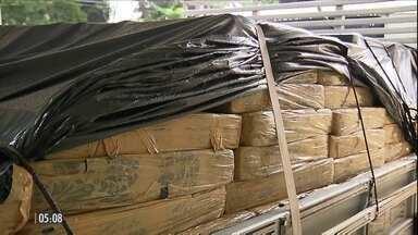 Polícia apreende sete toneladas de maconha em blitz no PR - A droga estava escondida dentro de um caminhão carregamento de madeira em uma oficina mecânica na cidade de Colorado.