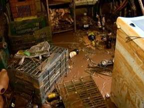 Chuvas causam estragos e moradores contabilizam prejuízos na Nova Alta Paulista - Casas foram invadidas pela água neste domingo (21).