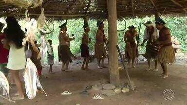 Índios da tribo Pataxó aguardam definição do governo sobre uso e posse de terra em Paraty - Indígenas ocuparam terreno às margens da Rodovia Rio-Santos.