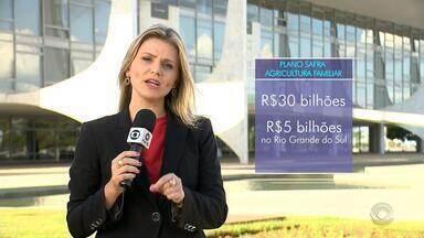 Governo libera R$ 5 bilhões para financiar agricultura familiar no RS - Governo manteve as taxas de juros entre 2,5% a 5,5% ao ano.