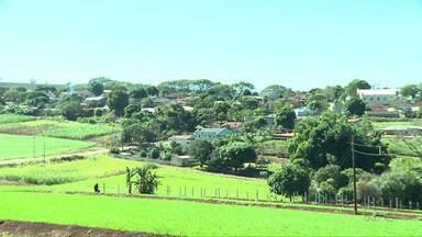 Paraná TV encerra a série Distritos falando de Maravilha - Moradores tem paixão por morar no distrito. As chácaras movimentam a economia do distrito com o turismo rural.