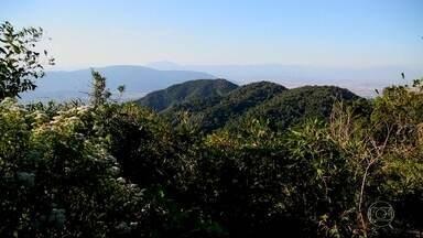 Expedição RJ chega ao topo do Rio - Equipe se aventurou pelas trilhas do Parque Estadual da Pedra Branca.