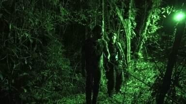 Hoje é dia de sobrevivência na selva: sensibilidade noturna - Alexandre Henderson aprende a caminhar pela mata na escuridão da noite