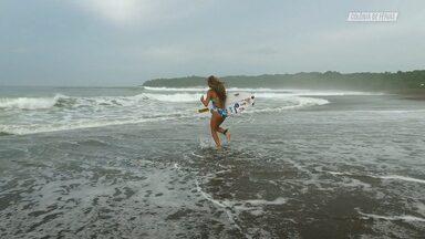 Surfe Livre