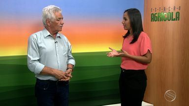 Meteorologista fala sobre período de chuvas em Sergipe - Meteorologista fala sobre período de chuvas em Sergipe.