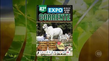 Confira a agenda de feiras e eventos no Piauí - Confira a agenda de feiras e eventos no Piauí