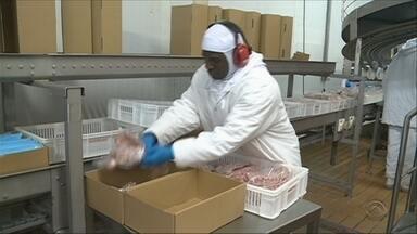 Após impactos da Operação Carne Fraca, agronegócio volta a crescer no estado - Após impactos da Operação Carne Fraca, agronegócio volta a crescer no estado
