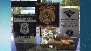 Cães farejadores encontram 16 kg de maconha em ônibus no ES - Veículo fazia o trajeto do Rio a Vitória.