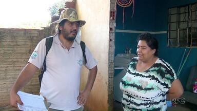 Infestação por dengue em Foz do Iguaçu está em 0,72% - No entanto, ainda há bairros com infestação superior a 2%