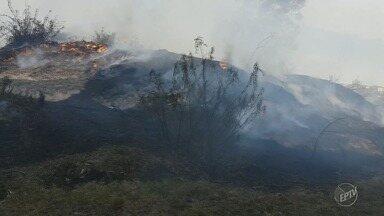 Moradores do bairro São José, em Campinas, reclamam de incêndios frequentes em terreno - Corpo de Bombeiros é acionado todos os dias para apagar as chamas de um terreno, segundo moradores.