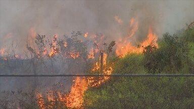 Tempo seco e fumaça de queimadas incomodam moradores de Rondônia - Situação pode despertar problemas de saúde; veja.