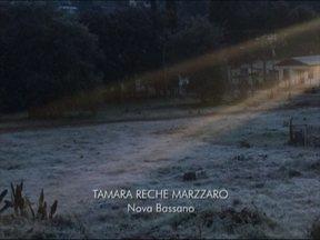 Telespectadores mandam fotos de geada na serra - Fotos são de Nova Prata e Nova Bassano, RS.