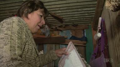 Lei Municipal incentiva a contratação de mulheres na construção civil em Guarapuava - A lei municipal exige que a partir de agora toda obra pública da Prefeitura de Guarapuava reserva 10% das vagas para mulheres.