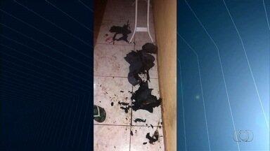 Homem é preso suspeito de atear fogo na esposa, em Valparaíso de Goiás - Vítima foi socorrida pela Polícia Militar e Corpo de Bombeiros. Segundo a corporação, ela teve 50% do corpo queimado e está internada em estado grave.