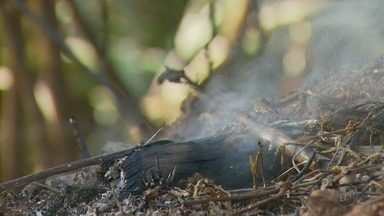Idoso morre em incêndio na zona rural em Santana da Vargem, MG - Idoso morre em incêndio na zona rural em Santana da Vargem, MG