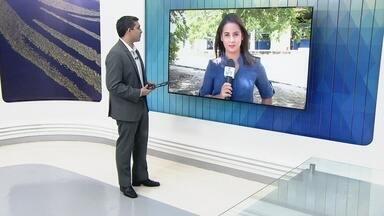 Manaus recebe o simpósio de plantas medicinais - Evento chama a atenção para importância do uso dessas plantas e de fitoterápicos no SUS