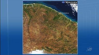 Imagem de satélite mostra condições da vegetação no Ceará - De acordo com a Funceme, cerca de 11% do território cearense está degradado por conta da seca.