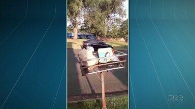Coleta de lixo reciclável em Maringá está prejudicada - A coleta caiu de 30 para 15 toneladas por dia