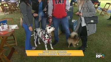 Curitiba recebe a primeira edição da Parada Pet, no Museu Oscar Niemeyer - A Parada Pet é um evento com vários serviços e produtos para os animais de estimação.