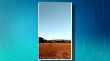 Vídeo mostra momento em que ultraleve cai em uma pista particular - Vídeo mostra momento em que ultraleve cai em uma pista particular