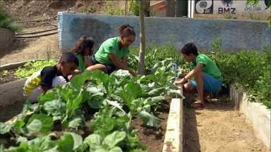 Apoiado pelo Criança Esperança, projeto no CE leva arte e educação a crianças - Ao todo, o projeto no Ceará atende 200 crianças e jovens.