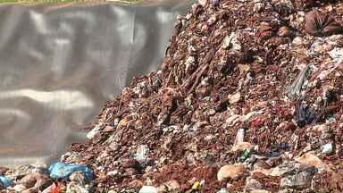 Ibiporã deve economizar 900 mil reais por ano após revisão de contrato - O serviço de coleta de lixo domiciliar do município foi readequado a pedido do Tribunal de Contas do Estado.