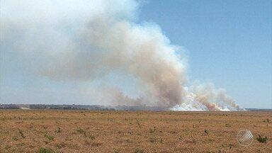 Previsão do Tempo: estiagem agrava situação de queimadas no oeste do estado - Região tem área com fogo ativo há 3 dias.
