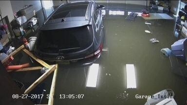 Água invade garagem no Texas e atinge 1,5m de altura em horas - A tempestade Harvey trouxe muita chuva para o Texas. A garagem fica mais de meio metro acima do nível da rua. Foram mais de 30 horas entre a água começar a subir e, depois, baixar totalmente.