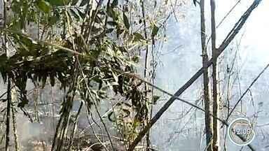 Incêndio atinge Parque Estadual do Itapetinga em Bom Jesus dos Perdões - Fogo assustou os moradores da região.