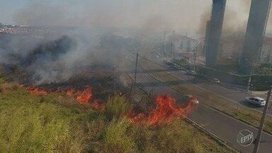 Cidades da região de Campinas registram fogo em regiões de mata no fim de semana - Em Valinhos, chamas atingiram a Serra dos Cocais, área de preservação ambiental.