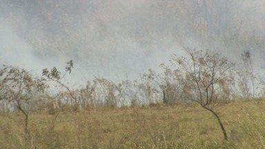 Fogo atinge área de vegetação em Taquaritinga, SP - Os bombeiros demoraram mais de 11 horas para controlar as chamas.