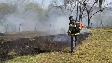 Incêndios causam transtornos em Votuporanga e Valentim Gentil - Outros dois incêndios também causaram transtornos em Votuporanga (SP) e Valentim Gentil (SP). Confira.