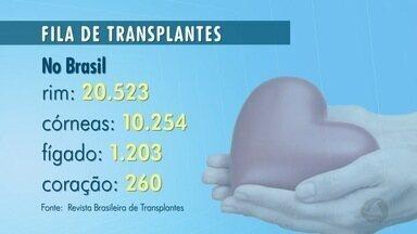 Setembro é dedicado à divulgação da importância da doação de órgãos - Setembro é dedicado à divulgação da importância da doação de órgãos.