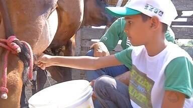 Crianças que nunca estiveram em uma fazenda conhecem a rotina do campo em MT - Crianças que nunca estiveram em uma fazenda conhecem a rotina do campo em MT.