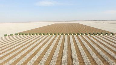 Força-tarefa reúne quase 30 colheitadeiras em fazenda para colheita do algodão - Força-tarefa reúne quase 30 colheitadeiras em fazenda para concluir colheita do algodão.