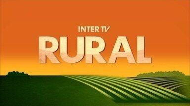 Inter TV Rural - Edição de domingo, 17/09/2017 - Na íntegra - Inter TV Rural - Edição de domingo, 17/09/2017 - Na íntegra