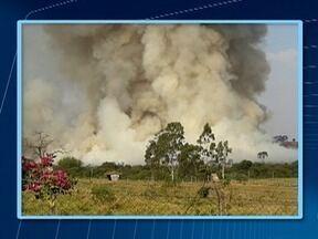 Corpo de Bombeiros leva uma hora para controlar incêndio em Martinópolis - Fogo não ofereceu risco a residências.