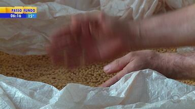 Fórum discute plantio da soja no Norte do RS - Região começa o plantio de seja no estado.