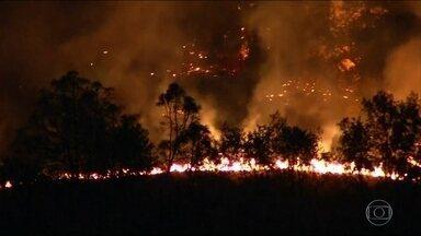 Nos EUA, 29 pessoas morrem em incêndios florestais na Califórnia - O fogo atingiu vinícolas da região de Napa e Sonoma, no norte da Califórnia. Cerca de 400 pessoas continuam desaparecidas.